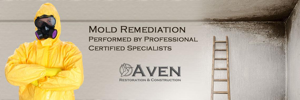 Mold Remediation | Aven Restoration & Construction